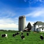 farm-bill